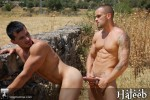 StagHomme – Damien & Eliad Fucking In A Field Among Horses (Haleeb)