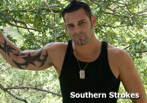 southernstrokes_banner1